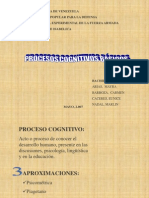 98655-Procesos-cognitivos-basicos