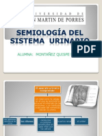 Semiologia Sistema Urinario