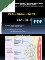 Seminario - Cancer de Mama (1)