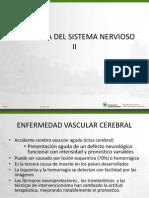 Sem 14 c 28 Patologia Snc