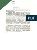 QUARTA DICOTOMIA - Significante X Significado