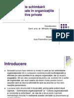 Efectele Schimbarii Organizationale in Organizatiile Creative Private