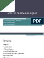 Tumores renales benignos.pdf