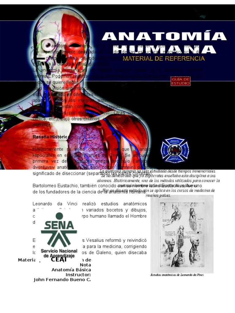 Talleres de Anatomía General CEAI