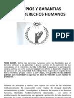 Organismos y Mecanismos de Los Derechos Humanos