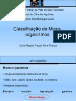 classificação dos micro-organismos