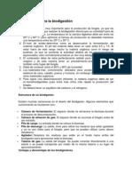 BIODIGESTOR desarrollo sustentable.docx