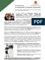 Articulo_p002_Que Son Las Constelaciones Organizacionales_NDBG 2009