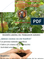 ASPECTO LABORAL AGROPECUARIO.pptx