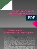 RÉGIMEN LABORAL DEL TRABAJADOR AGRARIO.ppt