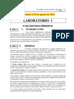 Lab 1 y Lab 2-2-13