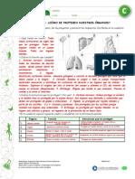 Articles-25398 Recurso Pauta PDF