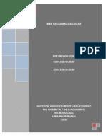 Monografia de Metabolismo Celular 2