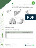 Articles-25398 Recurso PDF