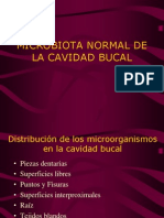 Microbiota Normal de La Cavidad Bucal