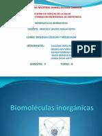 Biomoléculas inorgánicas-agua