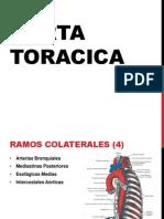 aortatoracica-120329091304-phpapp02