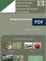 Microbiologia ITM en Frutas y Verduras