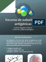 subunidades vacunales