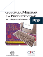 Manual Productividad