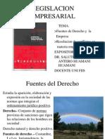 1 Fuentes de Der y Empresa.2013