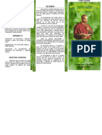 TRÍPTICO - Insecticidas y Ungüentos naturales a partir del extracto de Ortiga Menor