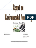 Environment Accounting.docx