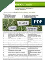 Popular Traditional Upland Rice Varieties Per Region