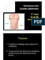 Introduction Cluster Abdomen Bouvy 2009