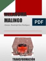 Melanoma Malingo