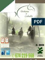 Dosier Dac_actividades y Tarifas 2013