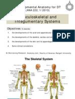 แกะเทป  Developmental of Musculoskeletal System