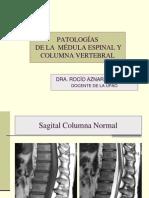 Medula y Columna