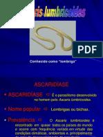 Ascaris Lumbricoides[1]PDF