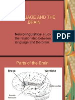 Topic 9 - Language and the Brain