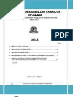 GUIA DE TRABAJO DE GRADO 2-2011.docx