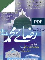 Raza e Muhammad (Urdu Book)