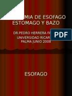 4ta Clase Abdomen - Esofago, Estomago, Bazo - Dr. Herrera