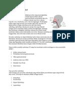 Endoskopi Gastrointestinal