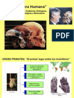 Clase Evolucion Humana 11 2