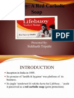 lifebuoy-130218140756-phpapp02