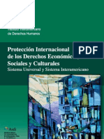Proteccion Internacional DESC
