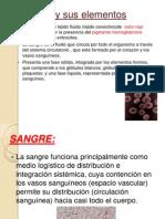 6 La SANGRE+y+Sus+Elementos