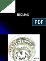 Biomas02
