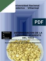 Practica N°1-Determinacion de la densidad aparente del maiz