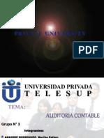 Exposicion Auditoria Contable