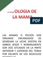 ESTUDIOS ESPECIALES ANATOMIA DE MAMA.pptx