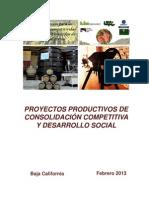 Proyectos productivosFIN
