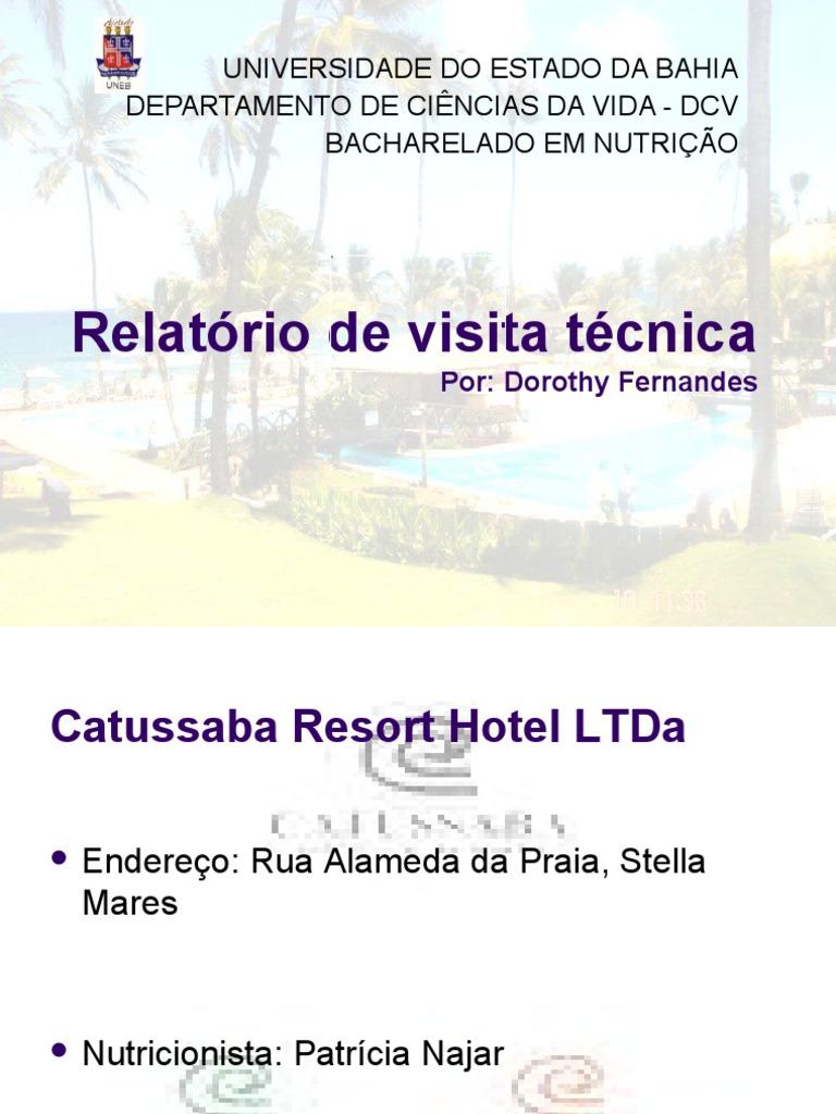 Relatorio De Visita Tecnica Normas Para Relat Rio De Visita