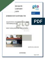 Dx de Salud Chichimequillas 2012-2013